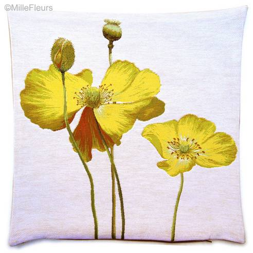 Two Yellow Poppies
