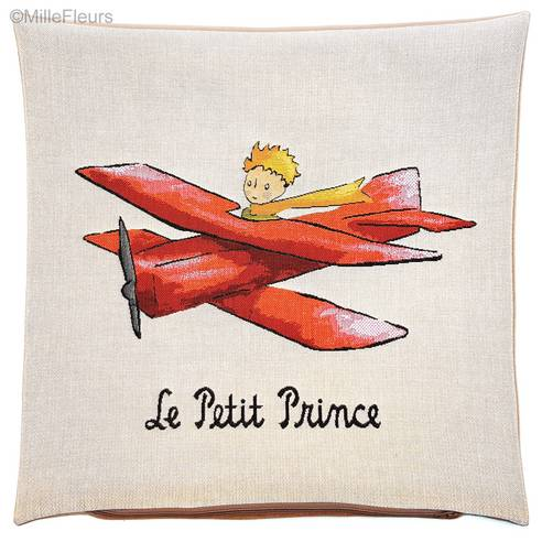 The Little Prince in airplane